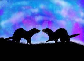 Starry Ferrety Night
