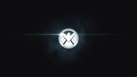 Agents Of S.H.I.E.L.D. by dj-corny