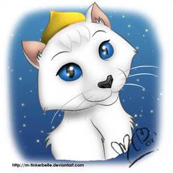 Diva kitty
