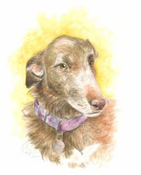 Doris Portrait