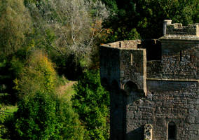 More of Caldicot Castle 11 by Tinap