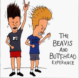 B and B ID by Beavis-and-Butthead