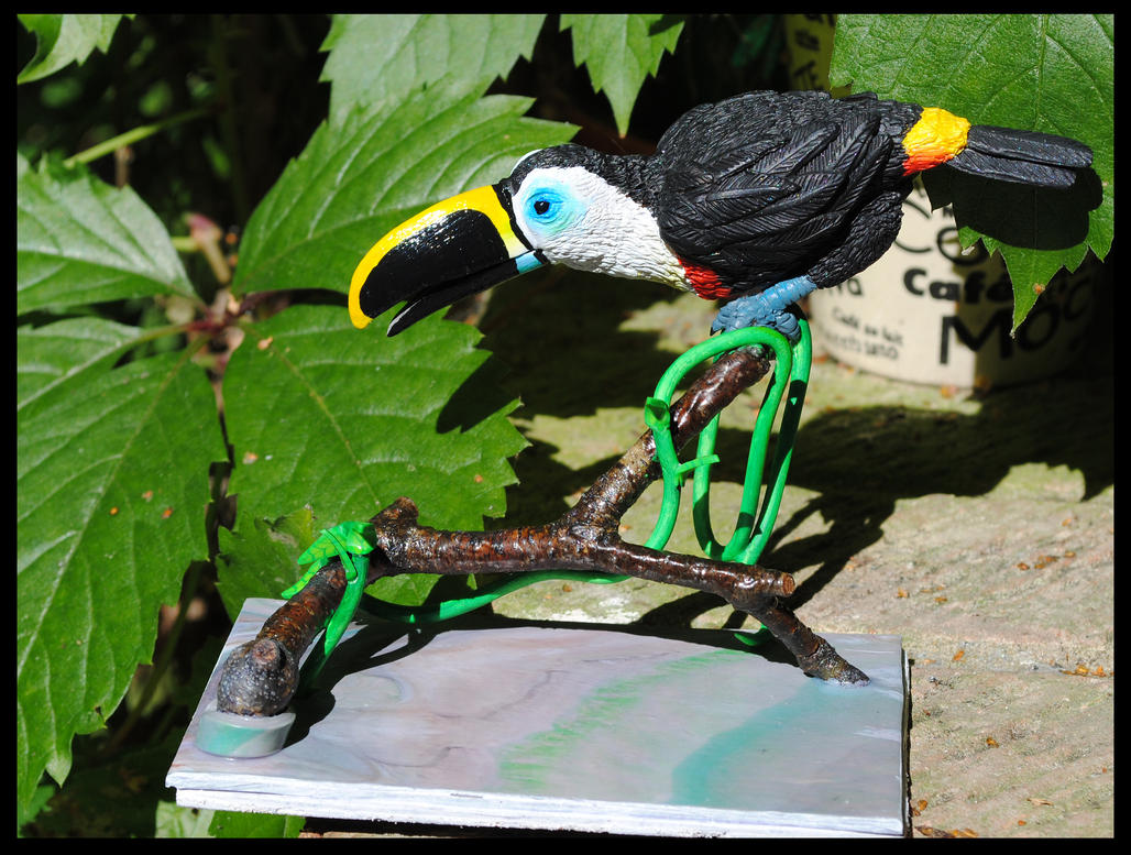 Channel-billed Toucan by gummiberri