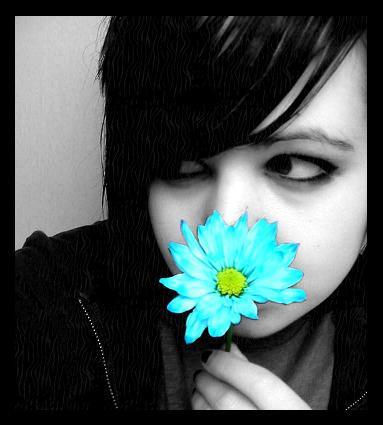 flowers by broken-smile