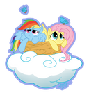 MLP: RD and FS