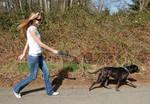 The Dog Walker 1