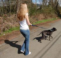 The Dog Walker 2 by intergalacticstock