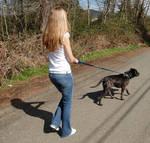 The Dog Walker 2