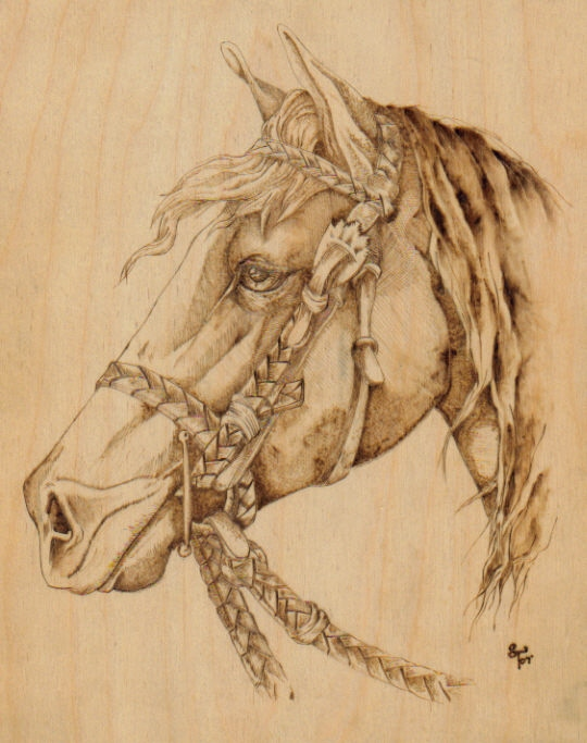 Woodburning: Horse by Aliehs