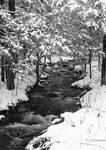 Winter's Chromatics