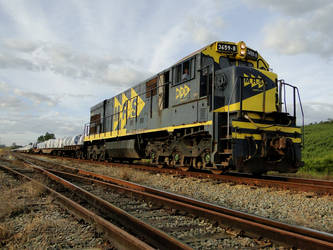 C26MP 3659