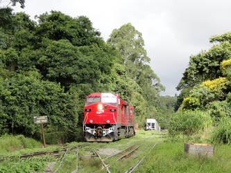 AC44i 633