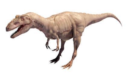 Albertosaurus by Evexoian