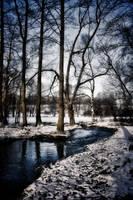 along the river by DanielGliese