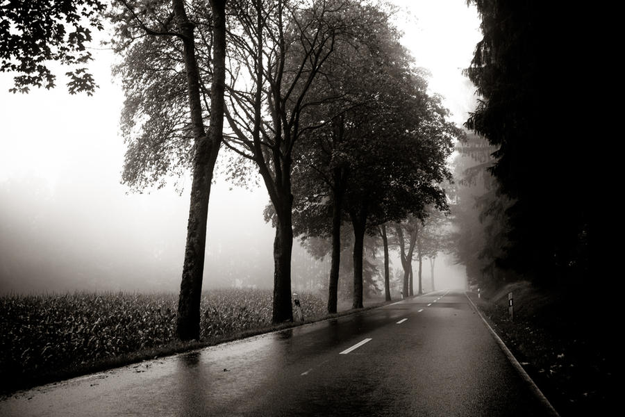 foggy country road by DanielGliese