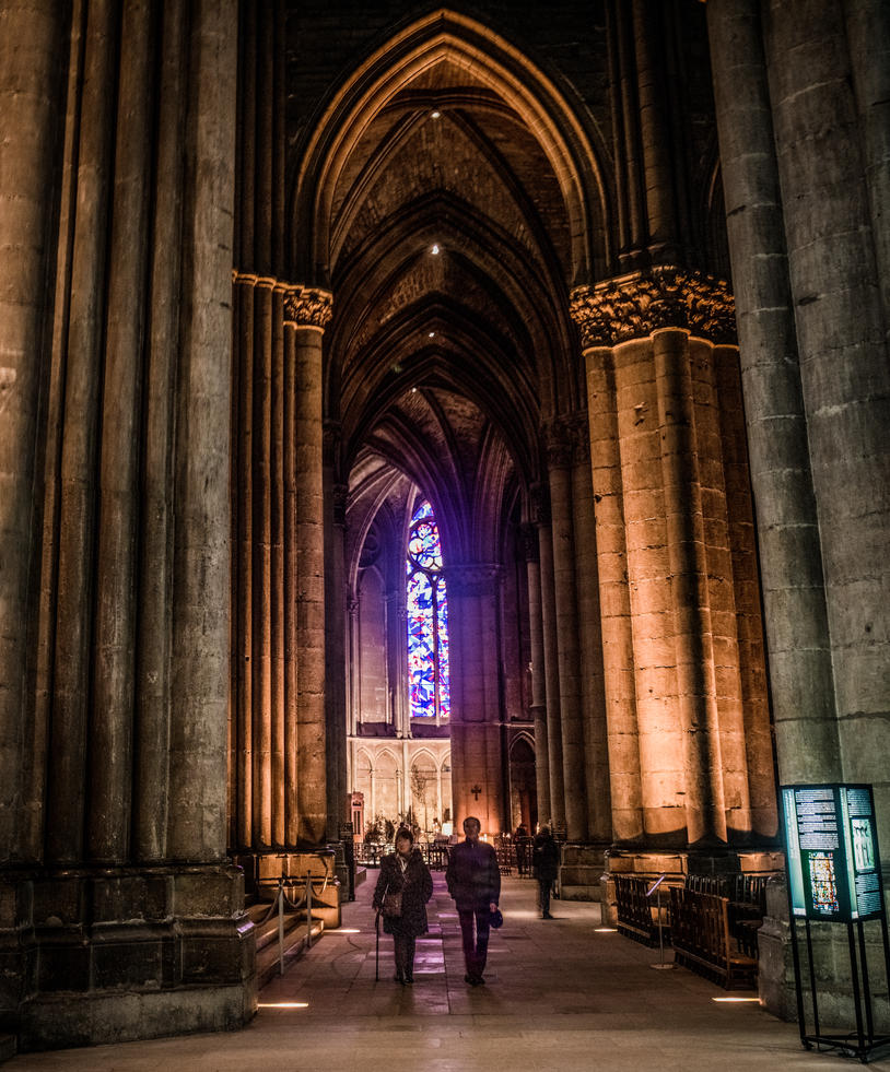Notre-Dame de Reims 1 by DanielGliese