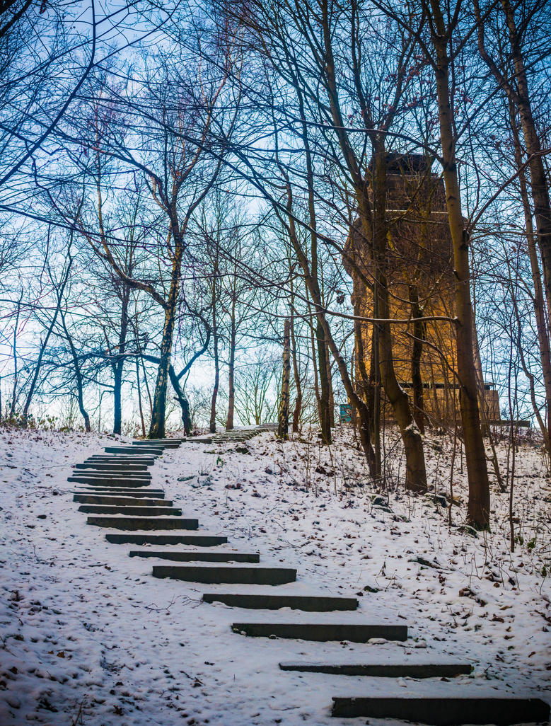 Tower in the Forest by DanielGliese