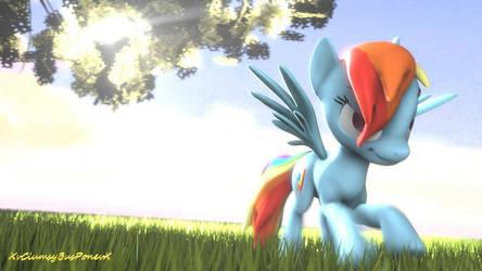 Rainbow Dash Run
