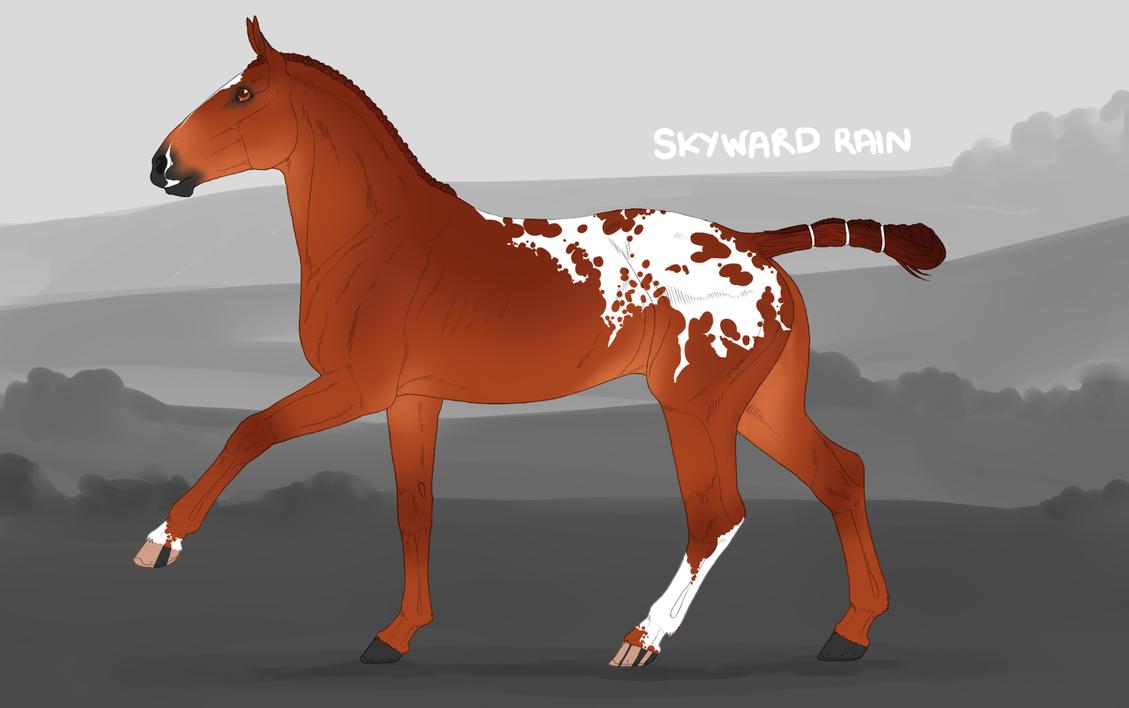 3428 Skyward Rain [official Ref.] by horsy1050