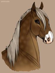 I'm a pretty boy! by horsy1050