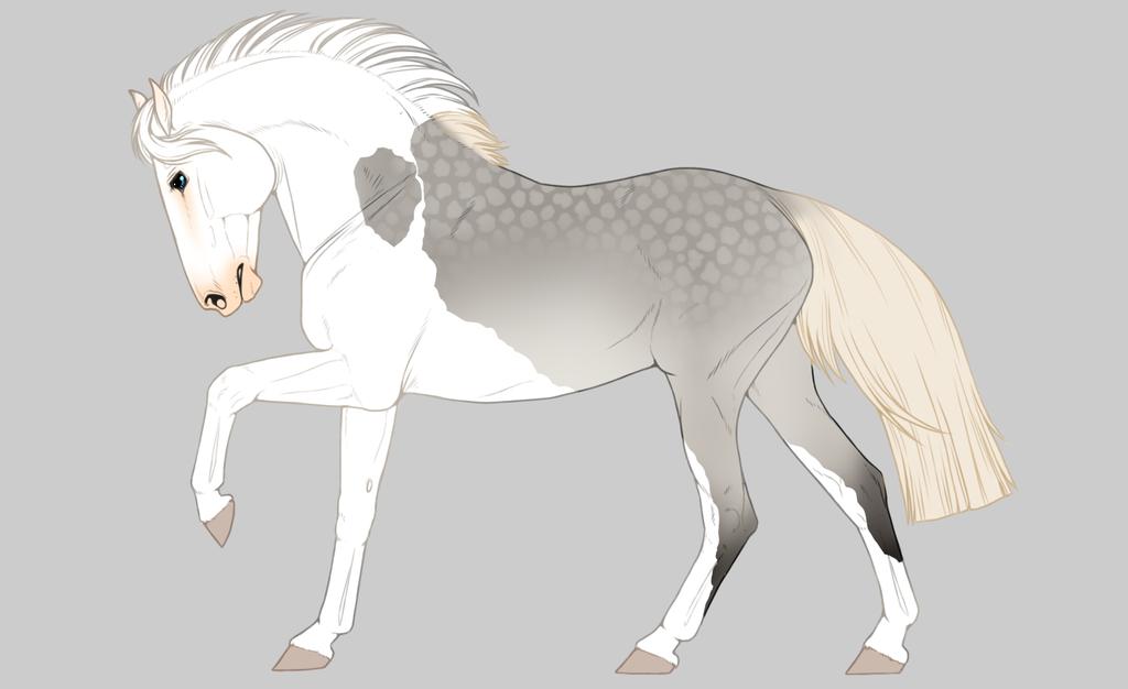 Light Dapple grey by horsy1050