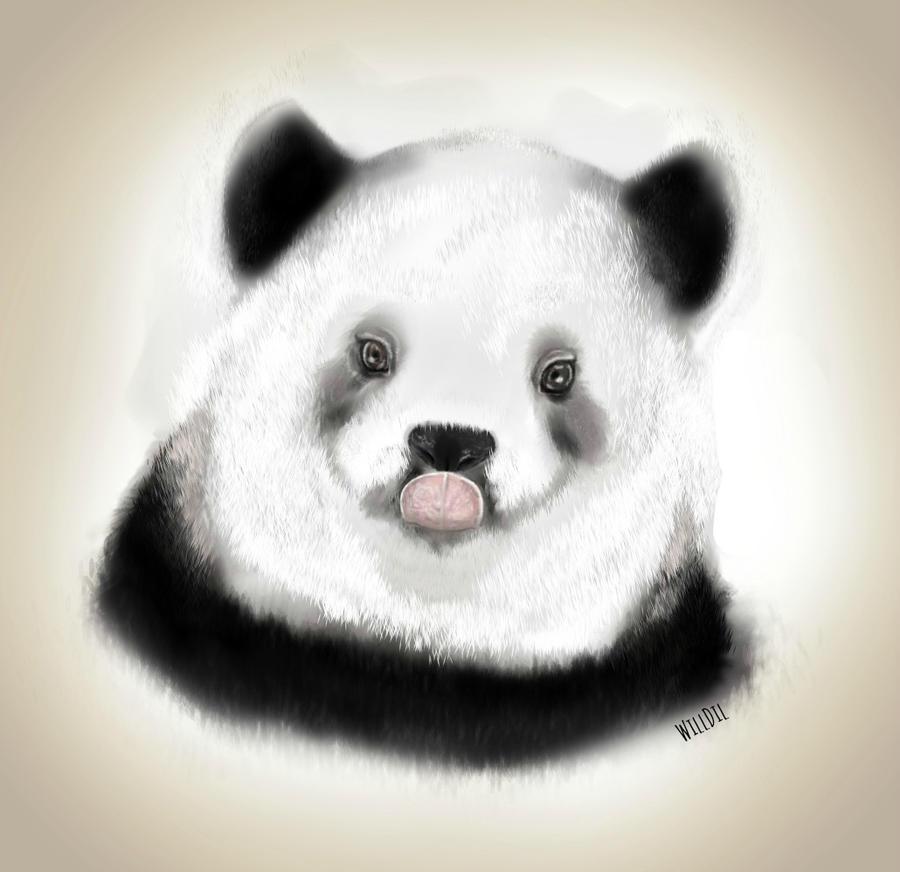 Panda by WillDil