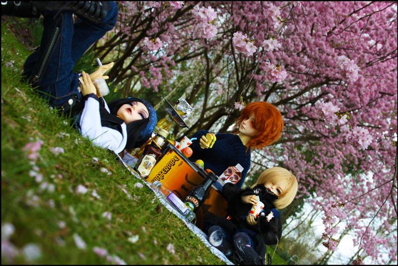 BJD: Hanami picknick by Kato-Yue