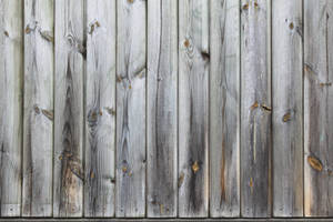 Old Wood Wall by Shekels