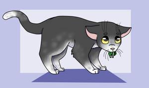 Warrior Cats - Fidgetpaw by applesheo
