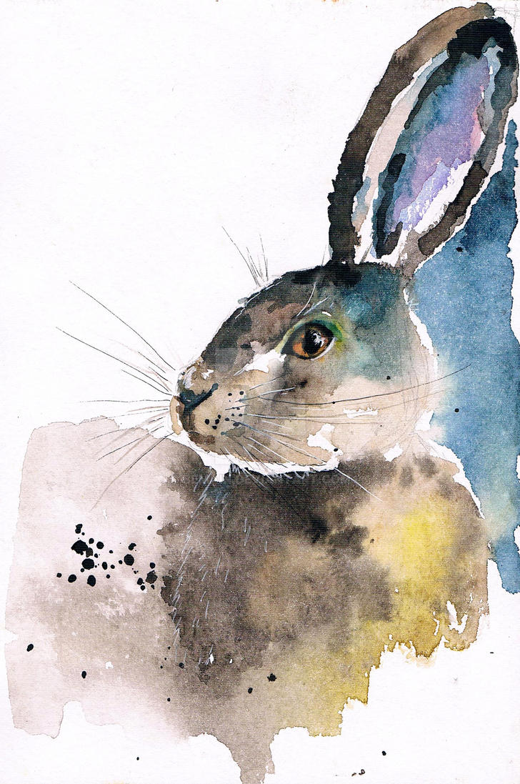 hare by bemain