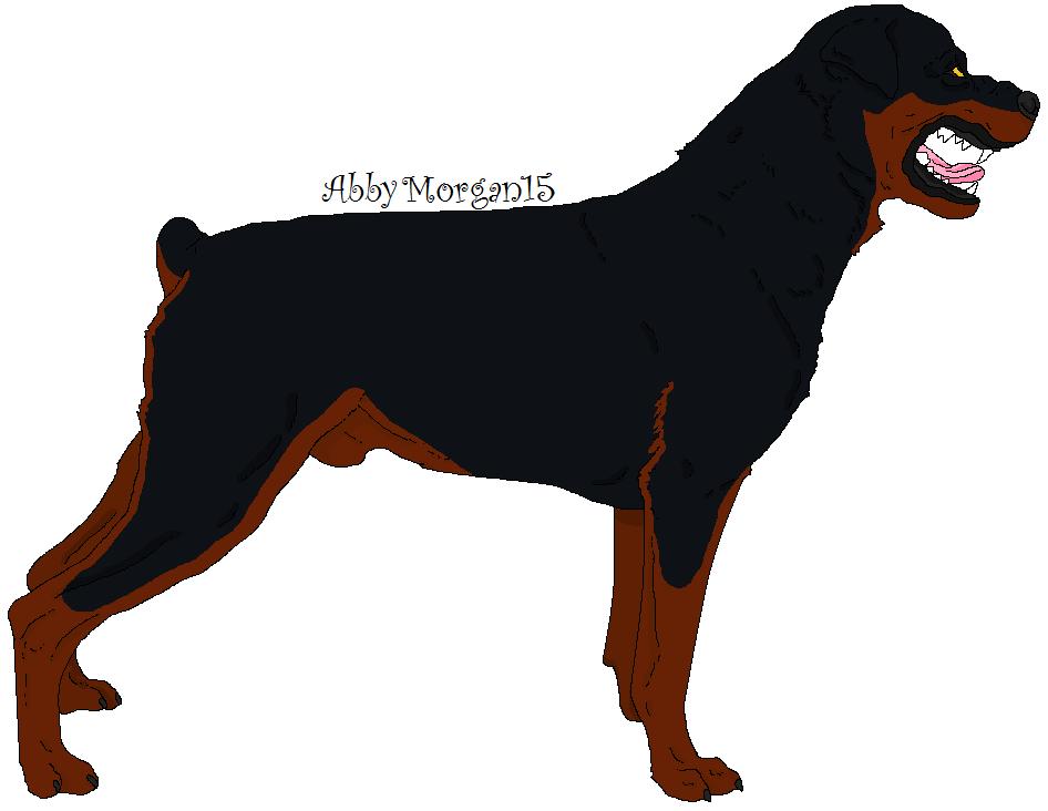 Growling Rottweiler Rottweiler Growling Drawing Www Pixshark Com