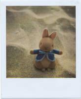 Peter Rabbit by MaryJosephine