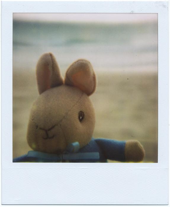 hi peter by MaryJosephine