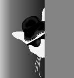 Vlei's Cat by Myari