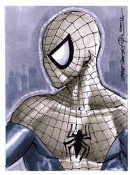 Spidey sketchcard doodle by SheldonGoh