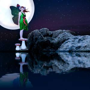 Airy Fairy Night