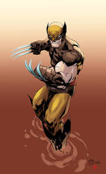 Wolverine by prialanis