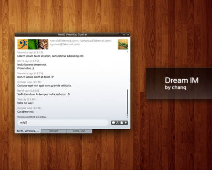 Dream IM chat window