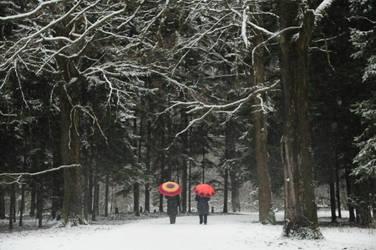 winter by amazingVivid