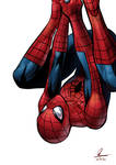 The Amazing Spider-Man 2!