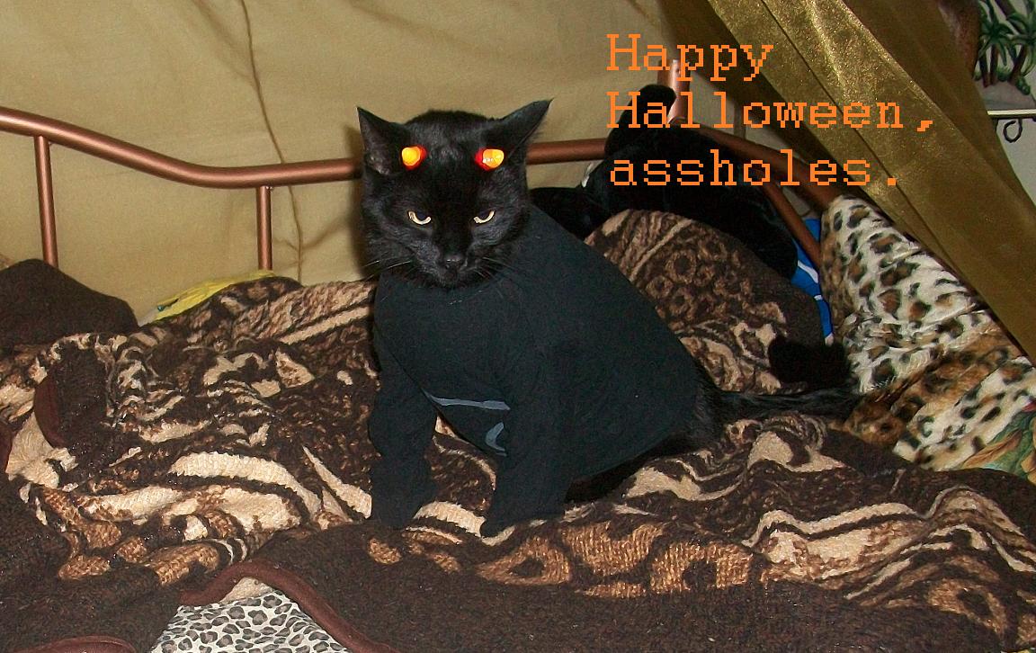 - Happy Halloween - by SapphireItrenore