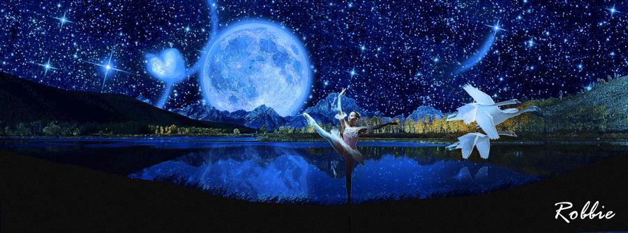 0f3c001e345 Ballerina Night by robylaracroft on DeviantArt