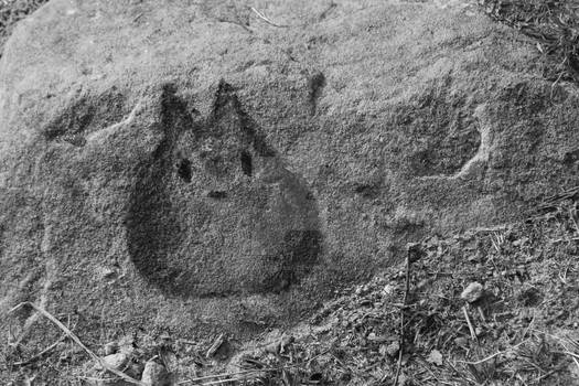 Totoro on the rock