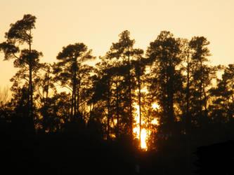 sunset 2 by firedrake24