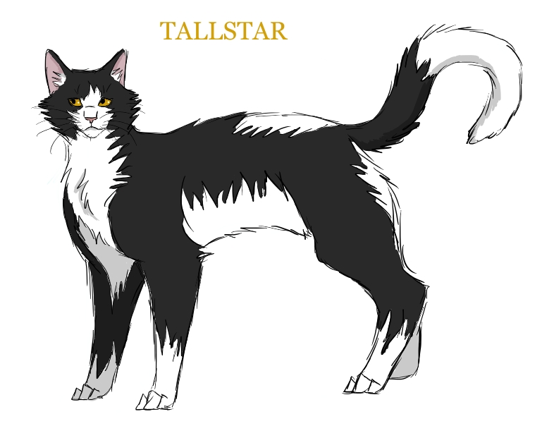 Image Of Blackfoot From Warrior Cats With A Transparent Background