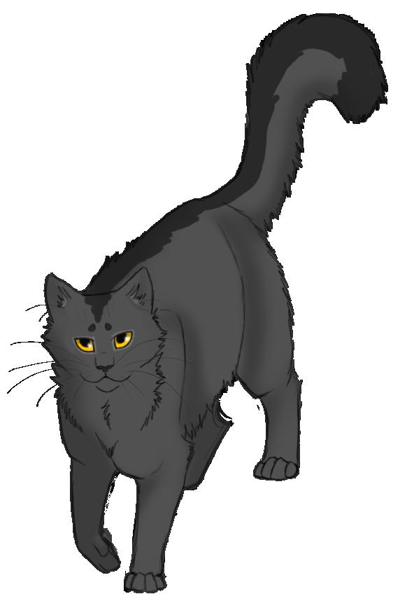 Stripe On Back Of Cat