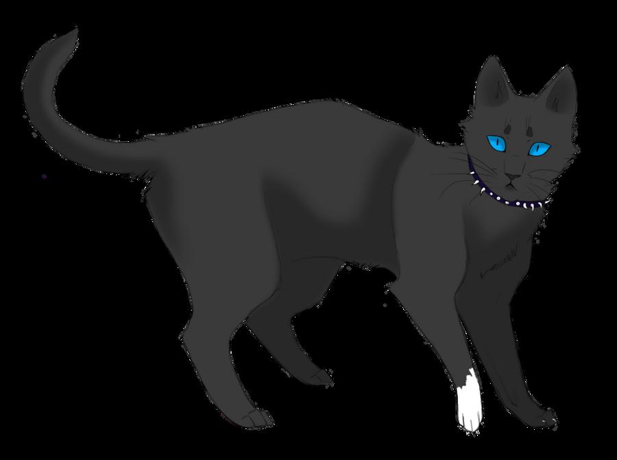 Elder Moons Warrior Cat
