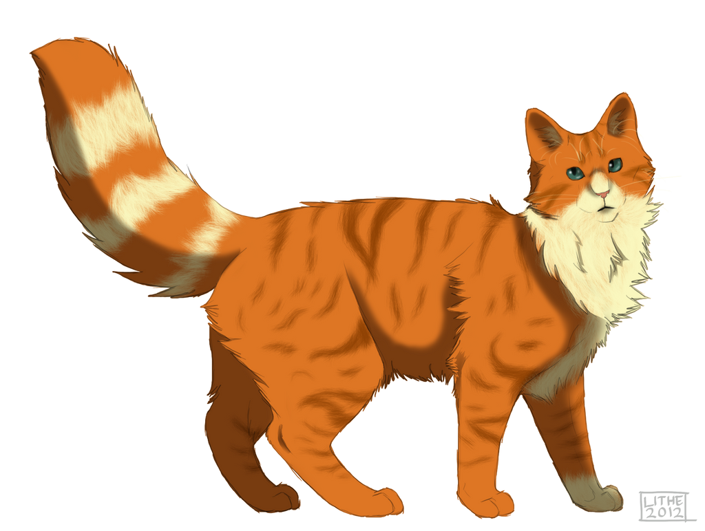 Warrior Cats Dawncloud