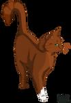.:Squirrelflight:.
