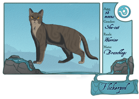 Flicker cotn ref 2013 by Lithestep
